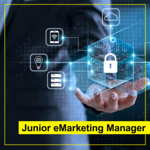 eMarketing Manager